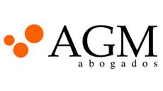 AGM-slide