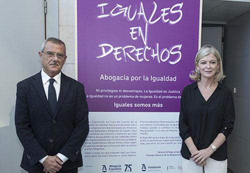 ICAV Iguales en Derechos. Abogacía por la Igualdad