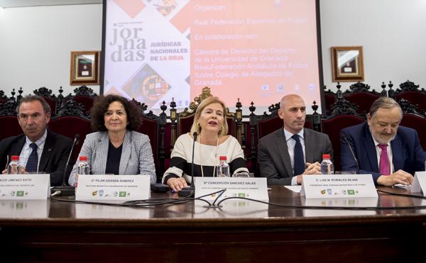Derecho Deportivo se dan cita en el Colegio de Abogados de Granada